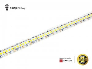 Taśma LED 12V 1200 SMD 2835 12mm IP68 19,2W/m Biały Zimny 6000K OPTICON PREMIUM