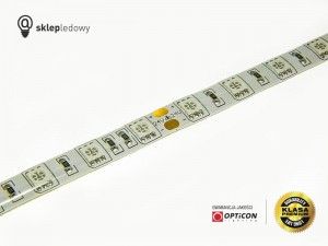 Taśma LED 24V 300 SMD 5050 10mm IP65 14,4W Niebieski OPTICON