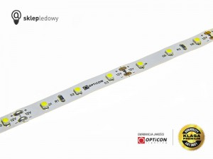 Taśma LED 12V 300 SMD 3528 8mm IP20 4,8W/m Biały Zimny 6000K OPTICON PREMIUM