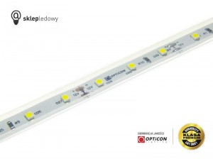 Taśma LED 12V 300 SMD 3528 10mm IP68 4,8W /m Biały Zimny 6000K OPTICON