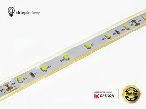 Taśma LED 24V 300 SMD 3528 10mm IP68 4,8W /m Niebieski OPTICON